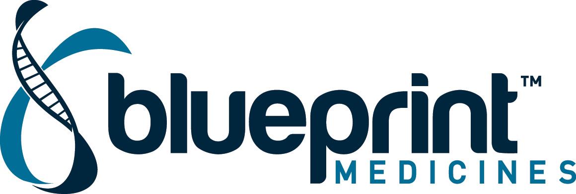 Blueprint_Logo_PMS