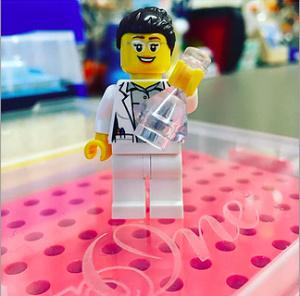 socialscientist Lego
